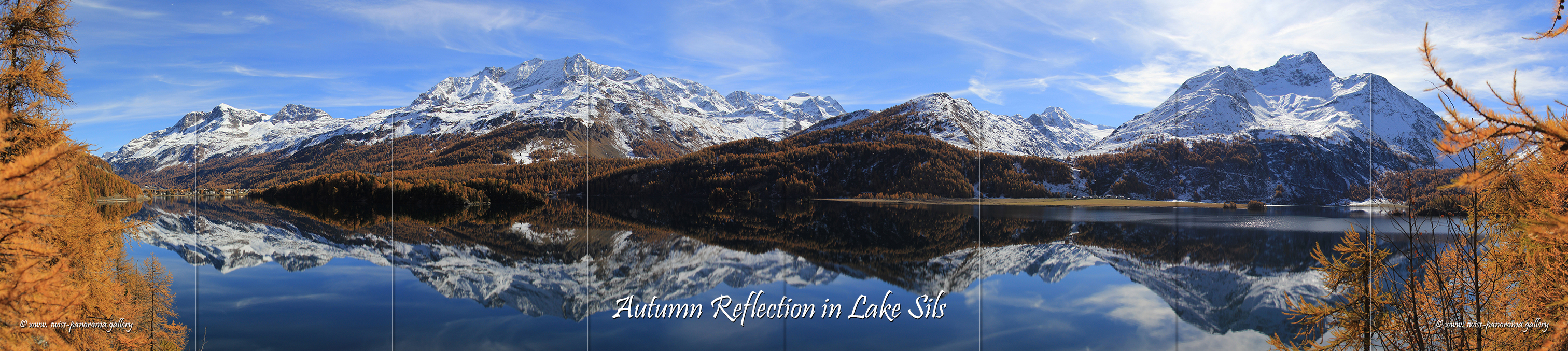 lake Sils reflection swiss panorama