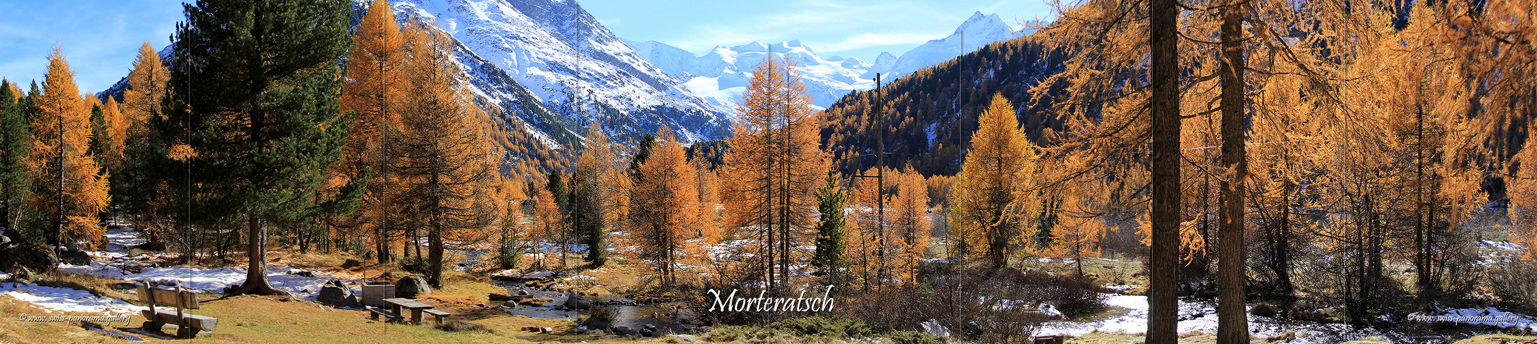 Morteratsch valley panorama